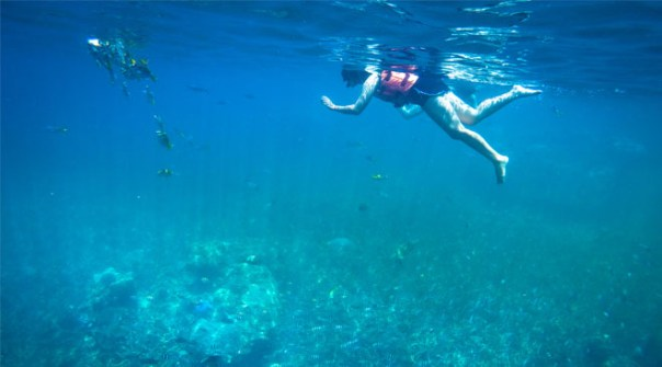 Diving-and-Snorkelling-in-Thailand-Made-Easy-resized.jpg